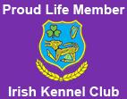 irish-club Cavalier King Charles Spaniel Ireland